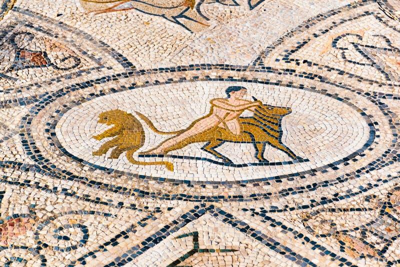 在Volubilis罗马废墟的美丽的古老马赛克,联合国科教文组织,我 免版税库存图片