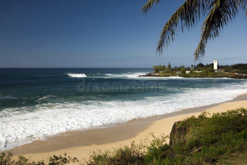 在Waimea海湾, O'ahu,夏威夷北部岸的大海浪  免版税库存照片