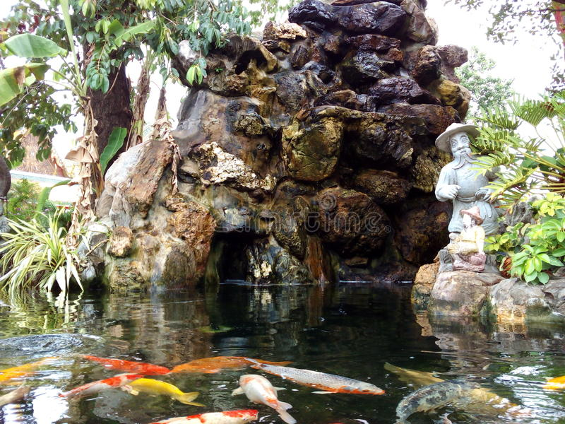 在Wat Pho的Koi鱼 库存照片