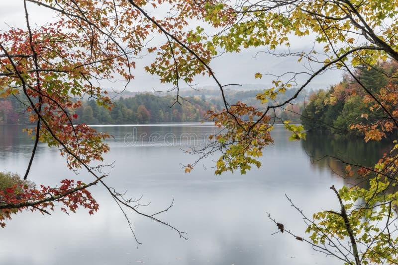 在Waterbury湖的秋叶 免版税库存照片