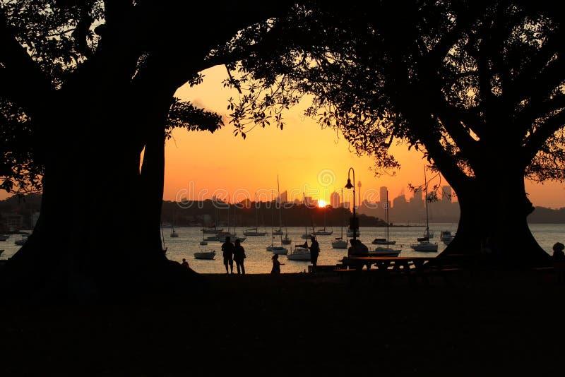 在Watsons海湾的橙色日落在悉尼,新南威尔斯,澳大利亚 免版税库存图片