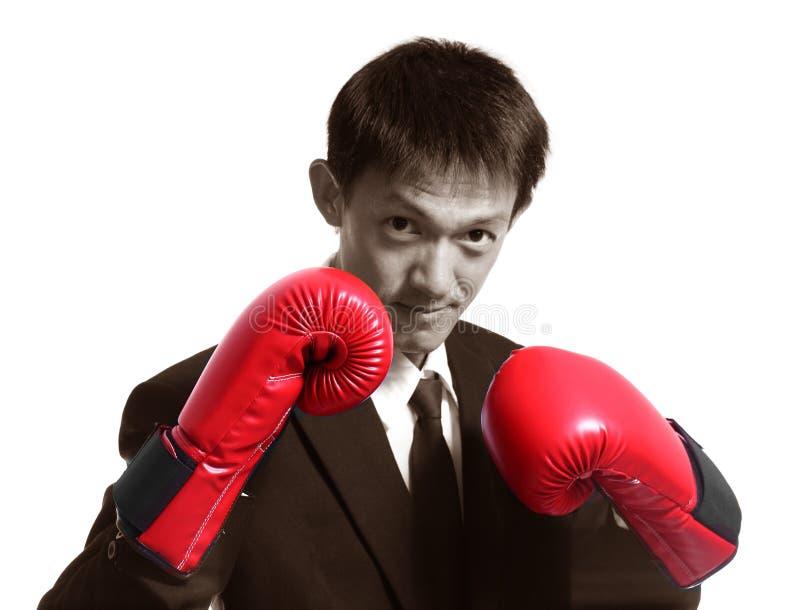 在whi隔绝的商人佩带的拳击手套的画象 库存照片