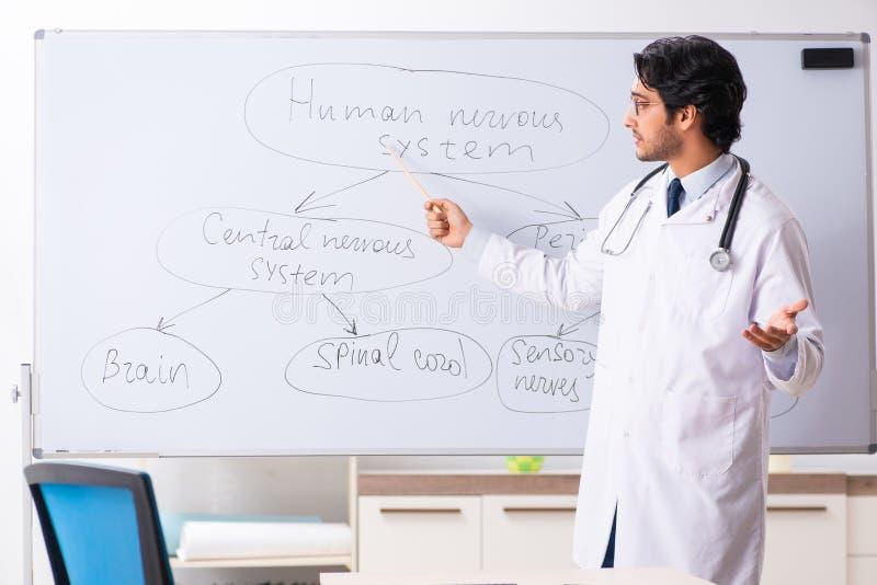 在whiteboard前面的年轻男性医生神经学家 免版税库存图片