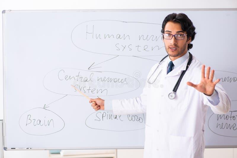 在whiteboard前面的年轻男性医生神经学家 库存照片