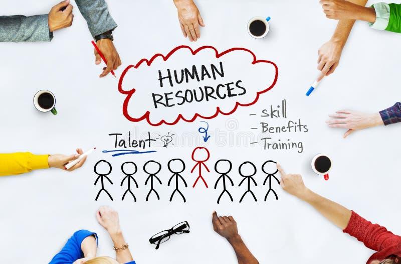 在Whiteboard的手与人力资源概念 免版税库存图片