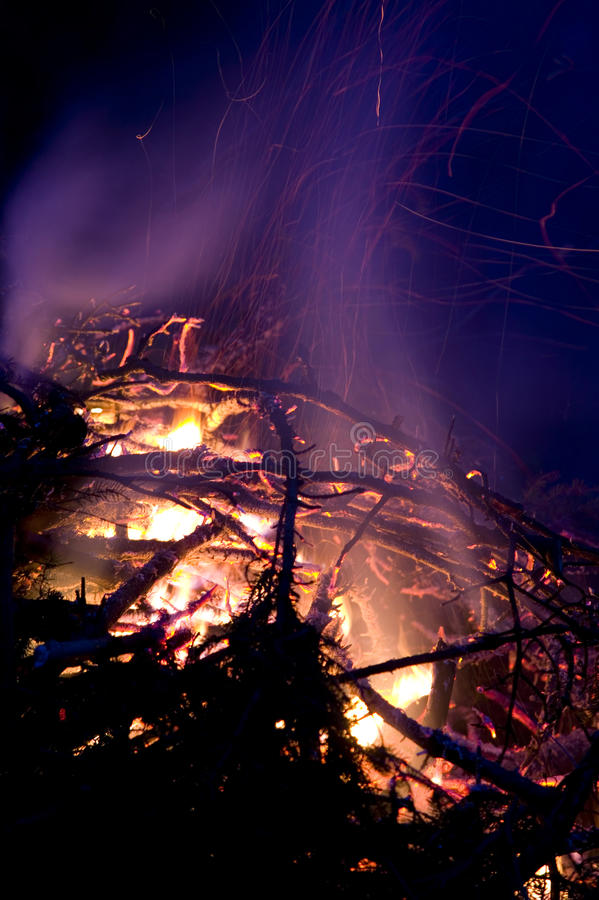 在woods.JH的营火 库存照片