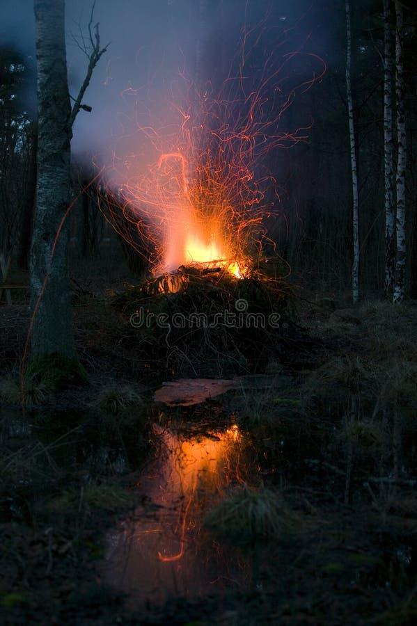 在woods.JH的营火 免版税图库摄影