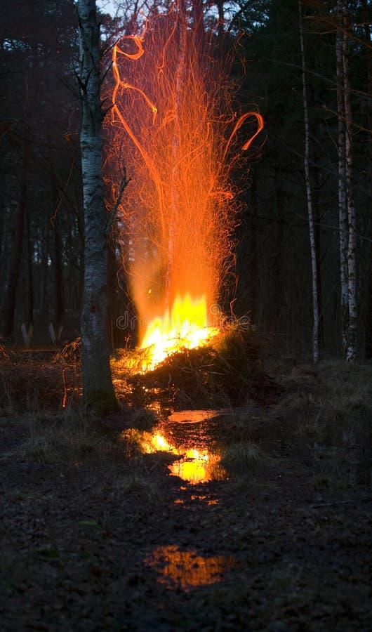 在woods.JH的营火 免版税库存图片