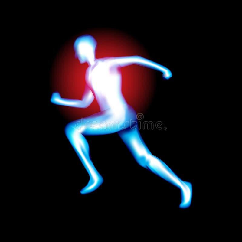 在X-射线下的男性身体,隔绝在白色,传染媒介 向量例证