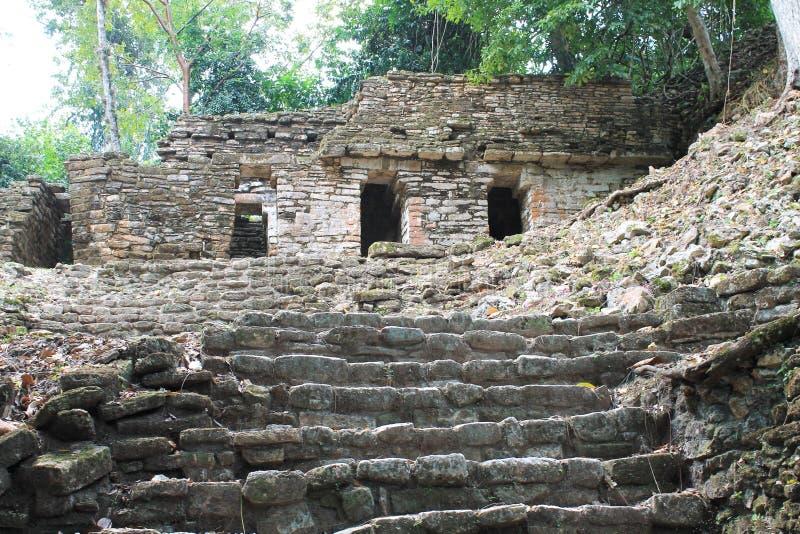 在Yaxchilan,恰帕斯州,墨西哥的古老玛雅石头废墟 免版税库存照片