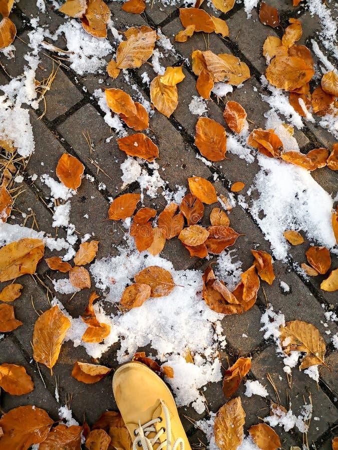 在yeallow落叶附近的黄色在路面的皮靴和雪 库存图片