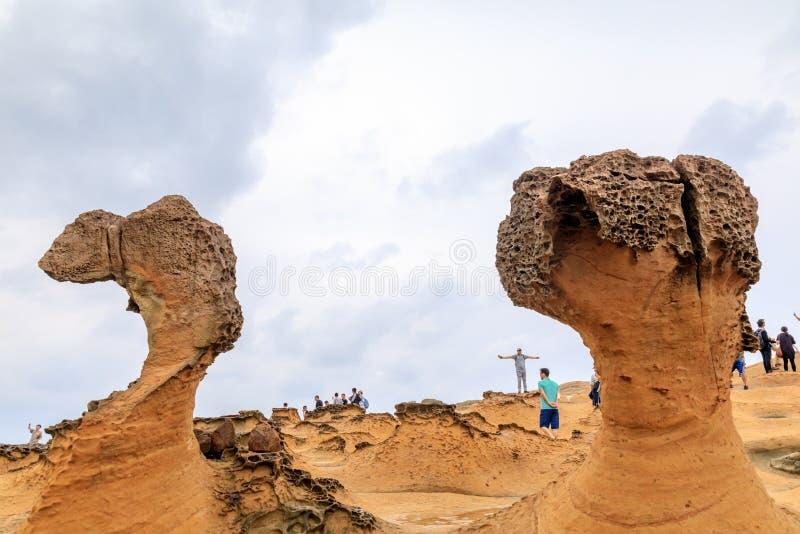 在Yehliu Geopark,台湾的2016 5月25日,自然岩层 T 库存照片