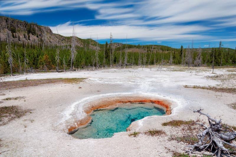 在Yellowstone湖的热的蓝色喷泉水池在黄石公园 免版税库存照片