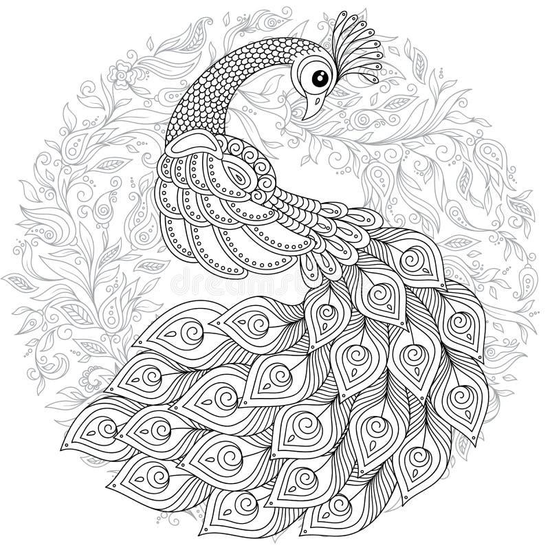 在zentangle样式的孔雀 成人antistress着色页 皇族释放例证