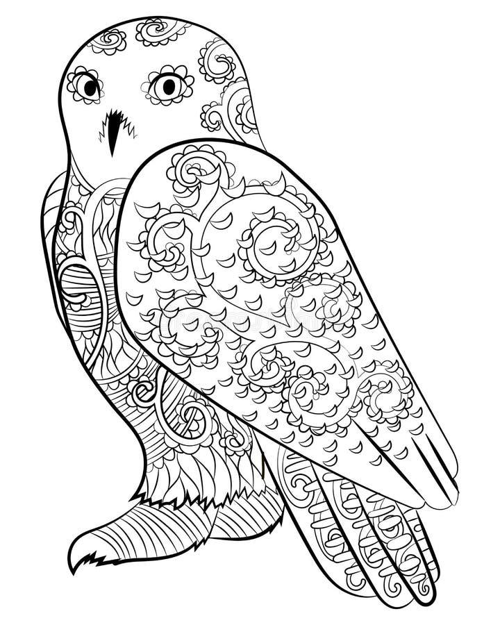 在zentangle样式的斯诺伊猫头鹰 向量例证