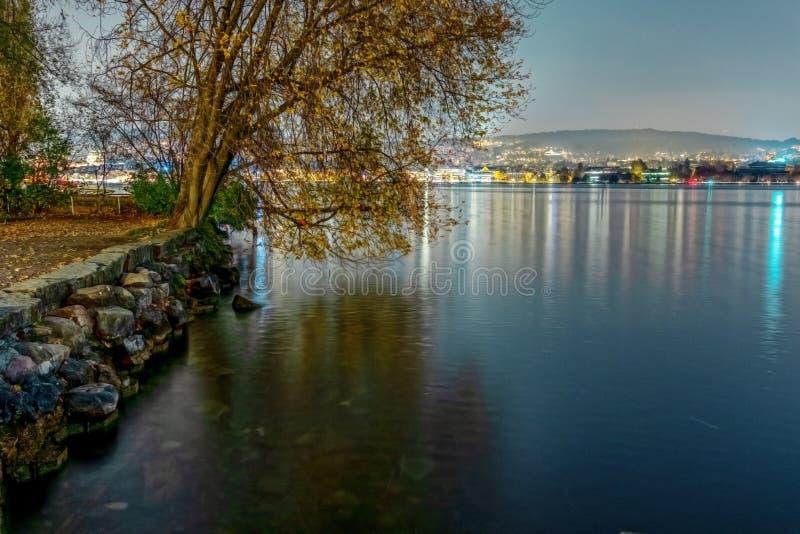 在Zurich湖的拉克夫由在晚上 免版税库存图片