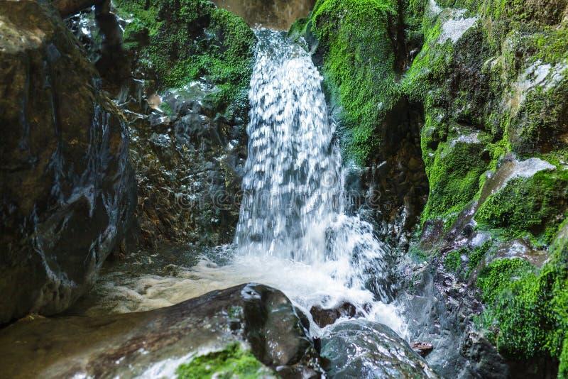 地下河和瀑布在罗马尼亚 库存照片
