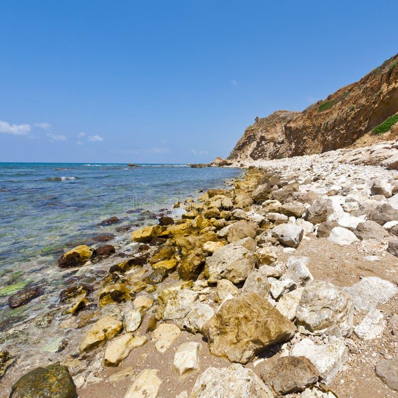 地中海的以色列岸多壁纸的海滩在以色列id.美女写真比基尼岩石图片
