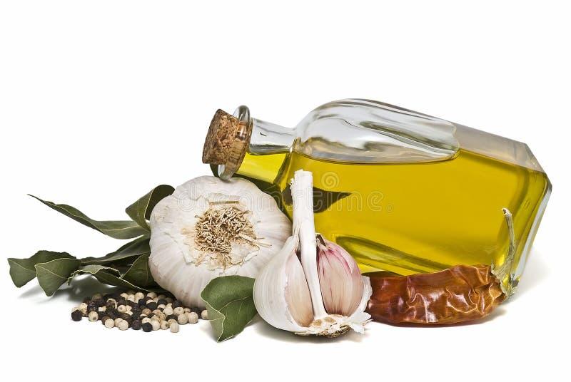 地中海油橄榄香料 免版税库存照片