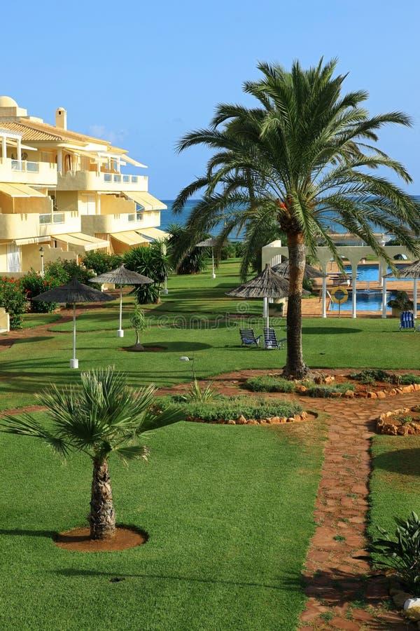 地中海的庭院