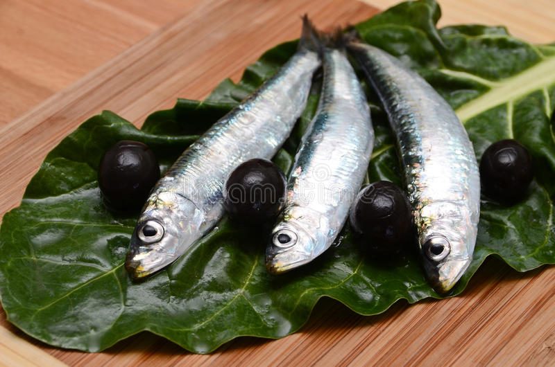 地中海的食物 图库摄影
