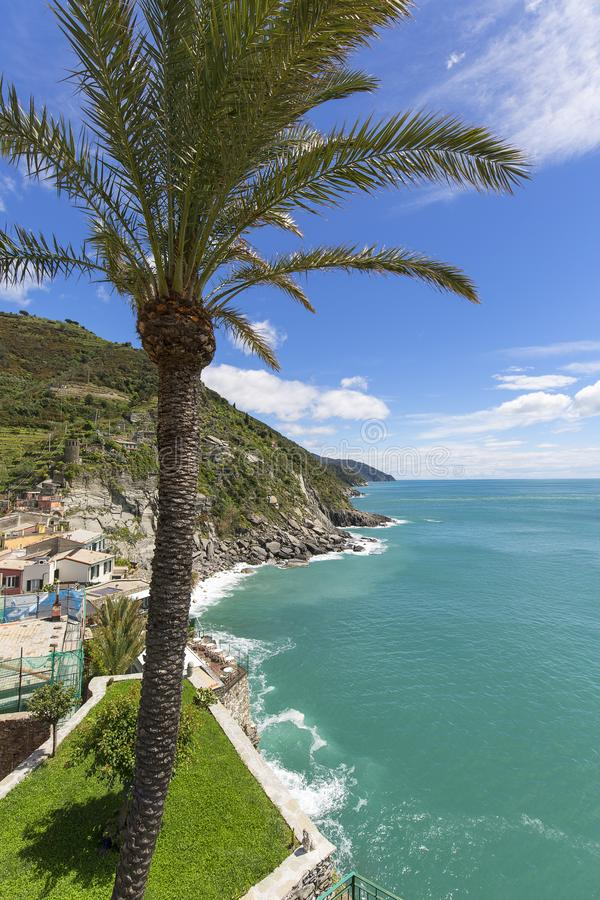 地中海,风景,伟大的棕榈,从多利亚城堡,韦尔纳扎,五乡地,意大利的看法 库存照片