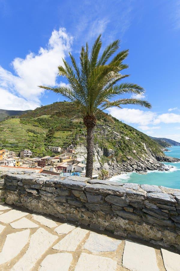 地中海,风景,伟大的棕榈,从多利亚城堡,韦尔纳扎,五乡地,意大利的看法 库存图片