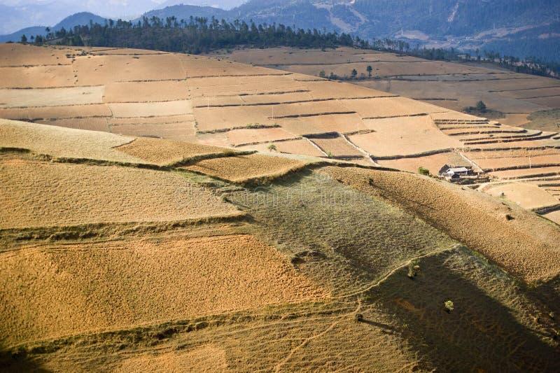 地产沙子 库存图片