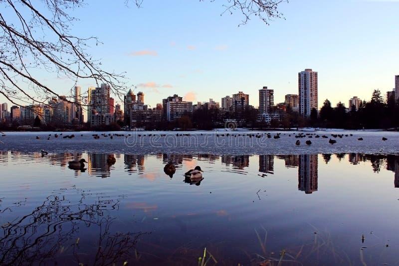 地平线,日落,温哥华市 库存照片