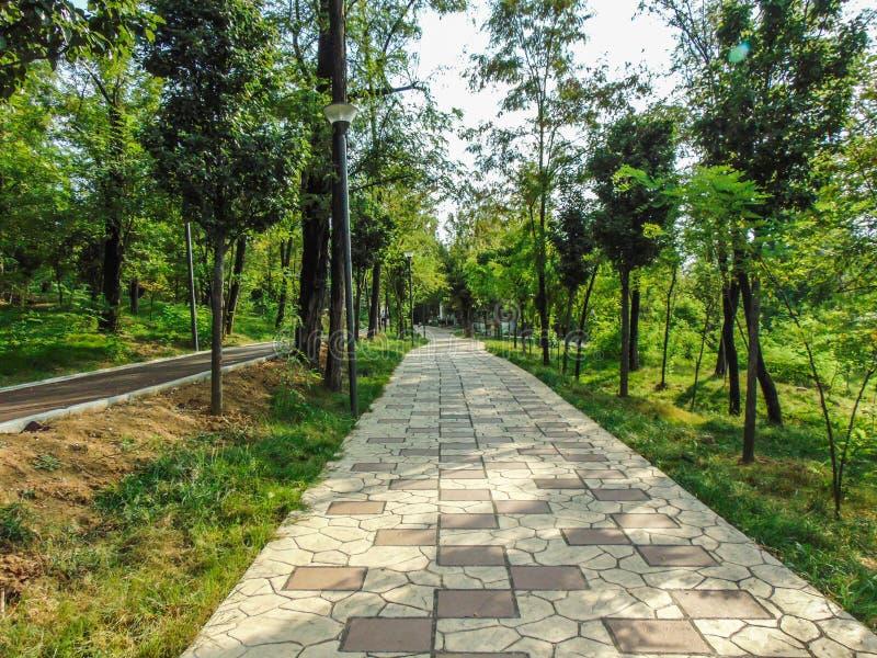 地拉纳伟大的公园  库存照片