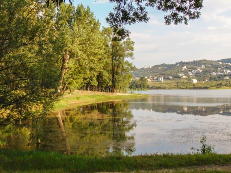 地拉纳伟大的公园  免版税库存图片
