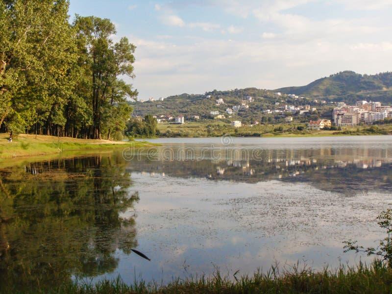 地拉纳伟大的公园  免版税图库摄影