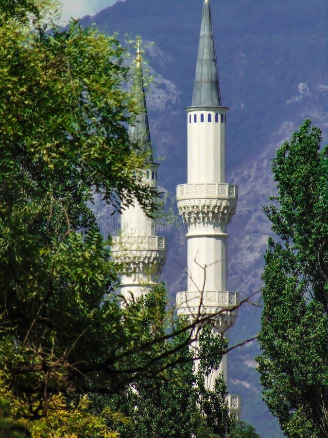 地拉纳清真大寺的尖塔  免版税库存照片