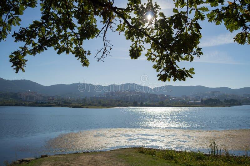 地拉纳,阿尔巴尼亚伟大的公园的湖  免版税库存图片