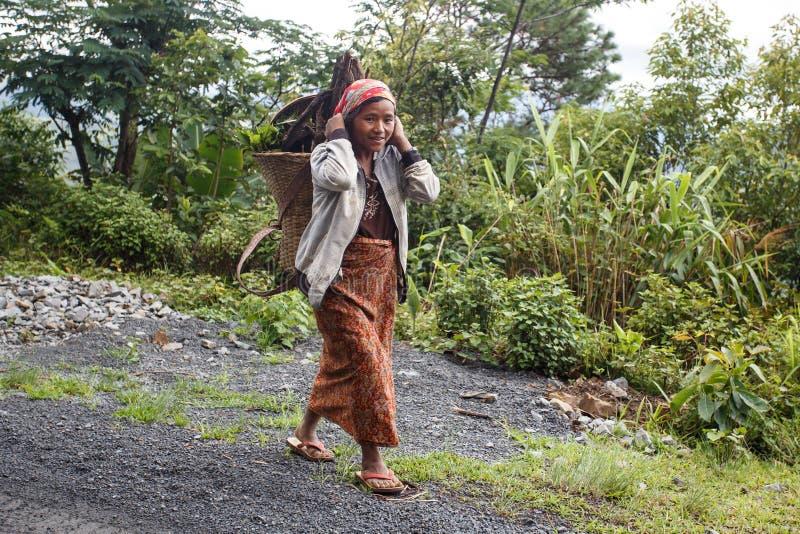 地方夫人Carrying Wood在钦邦,缅甸 库存照片