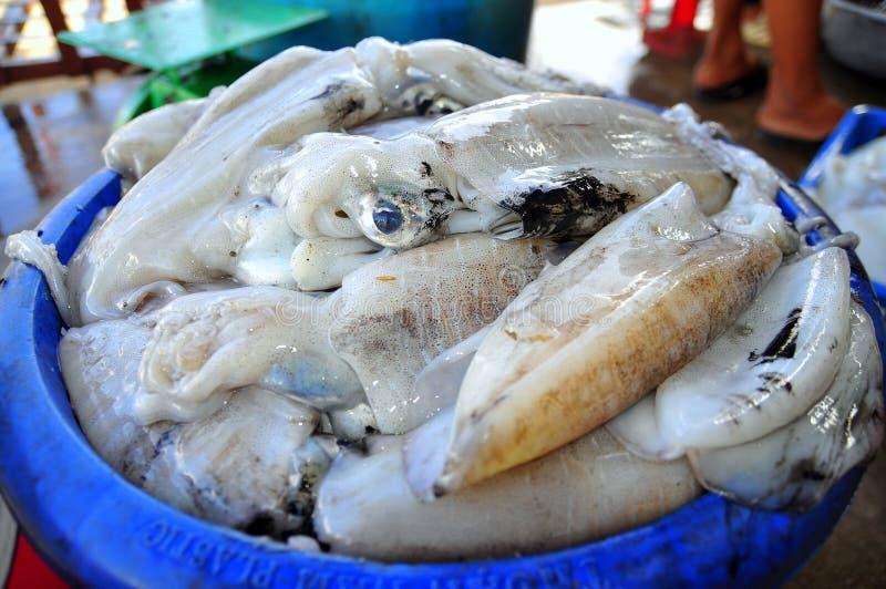 地方渔夫捉住的乌贼是在越南的昆仑岛海岛上的待售 免版税库存图片