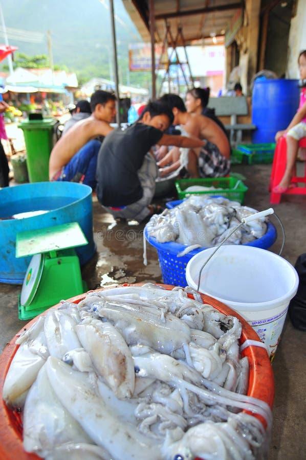 地方渔夫捉住的乌贼是在越南的昆仑岛海岛上的待售 库存图片