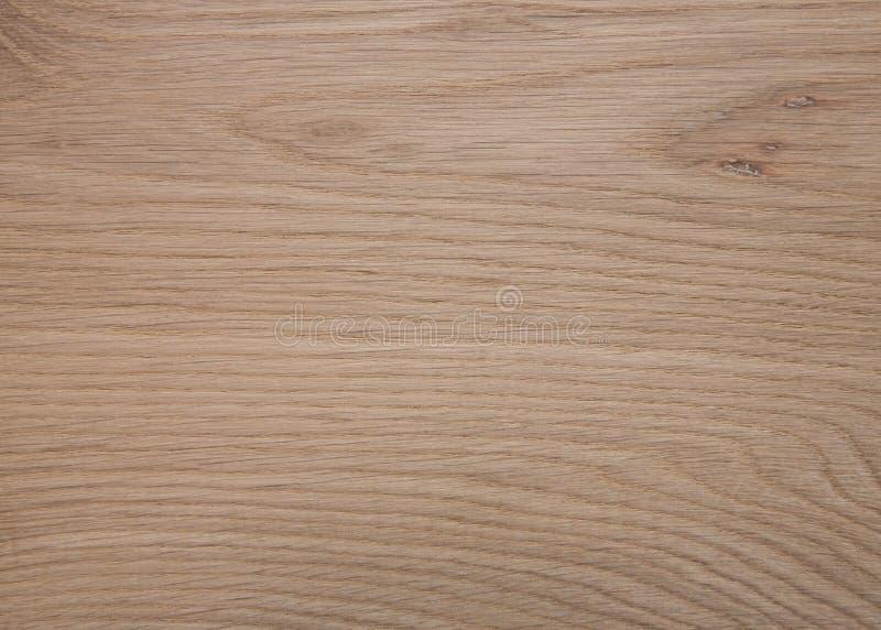 地板橡木面板 库存照片