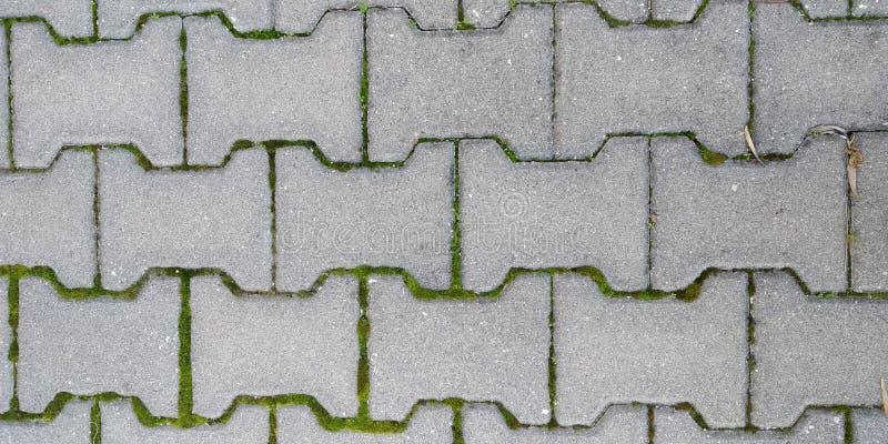 地板纹理与边路石头的 免版税库存图片