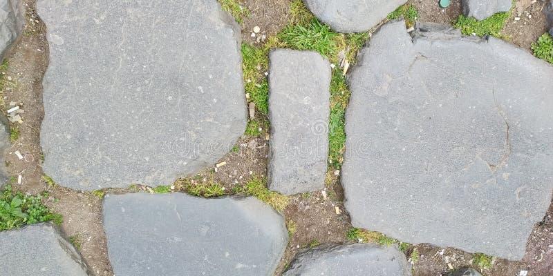 地板纹理从Coloseum,罗马,意大利的 免版税库存图片