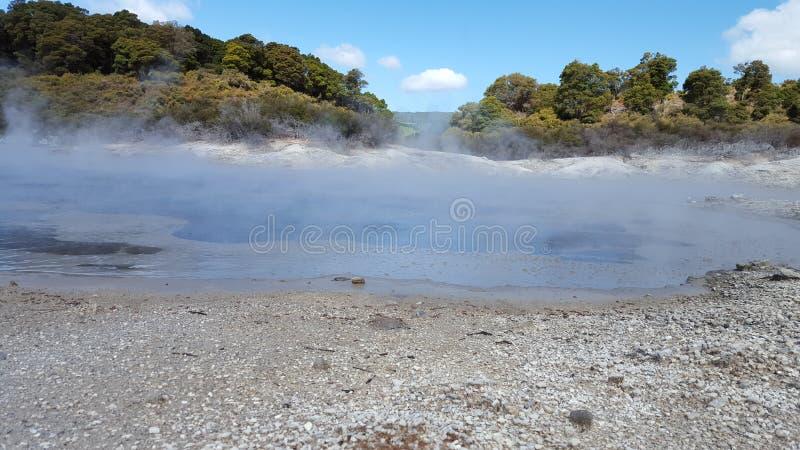 地热春天NZ 图库摄影