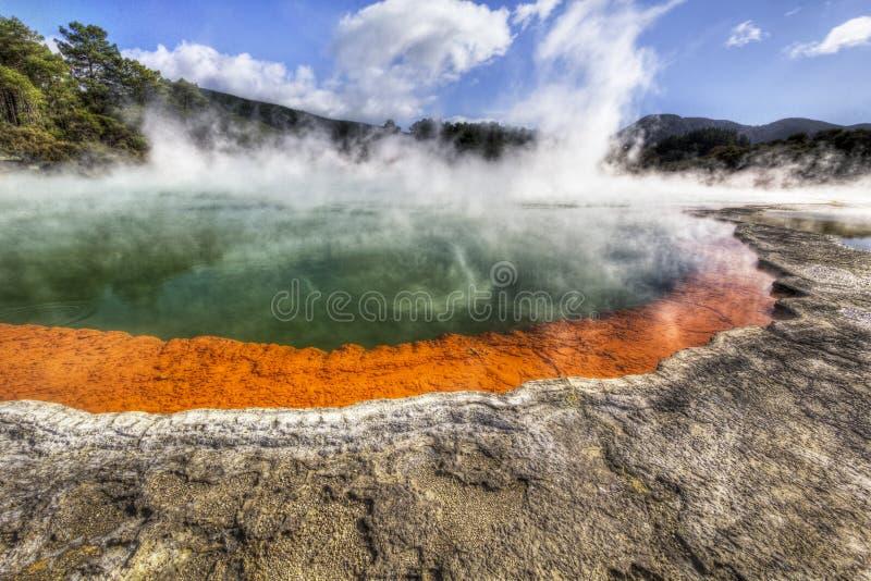 地热香宾池在新西兰 免版税图库摄影