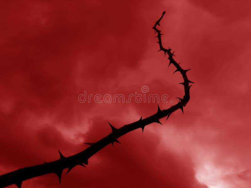 地狱鞭子 免版税库存图片