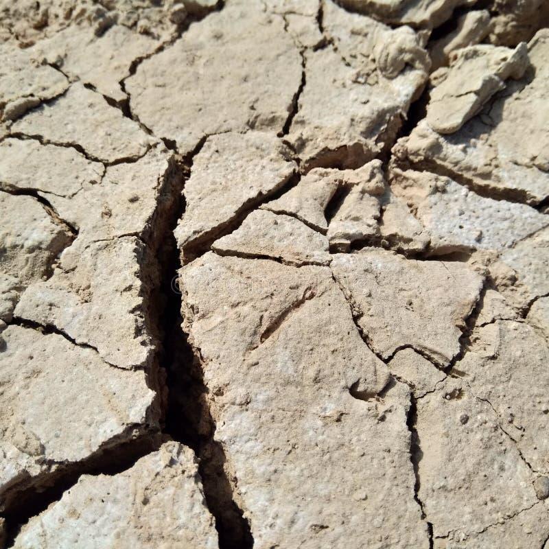 地球夏天摄影 免版税库存照片