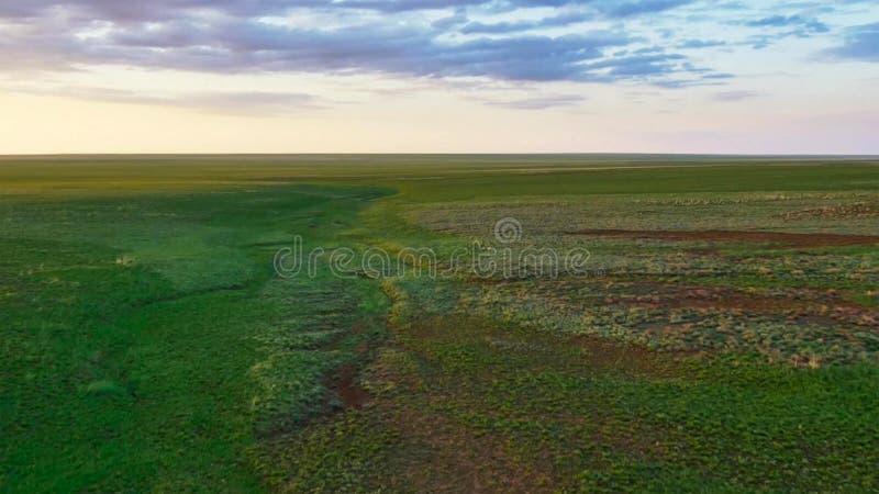 地球,浩大的欧亚干草原上的最大的草原 图库摄影