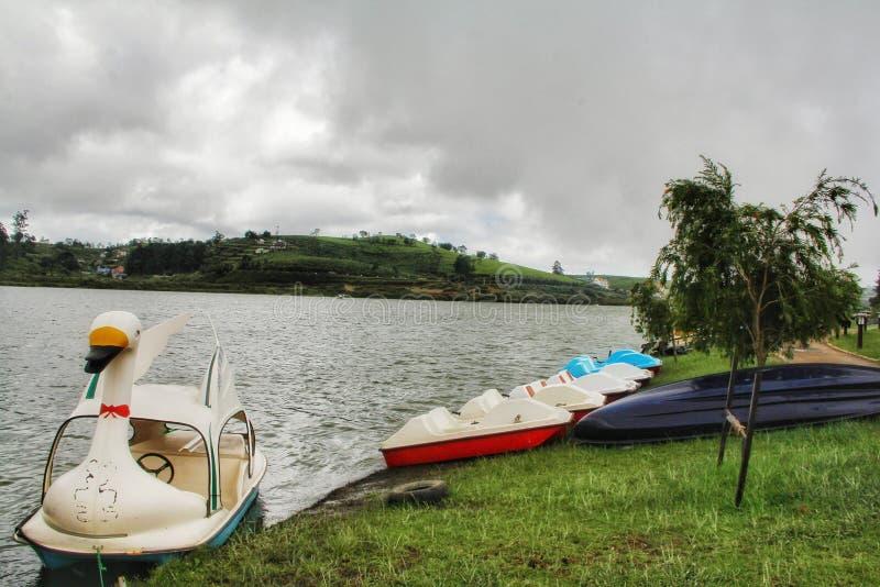 地球,美丽的湖格里努沃勒埃利耶上的天堂 免版税图库摄影
