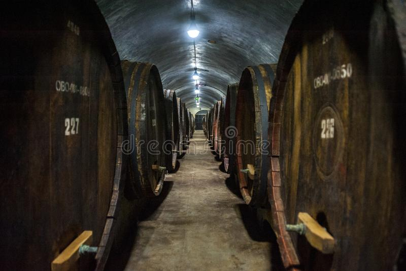 地窖科涅克白兰地侧那里橡木喝酒 免版税图库摄影