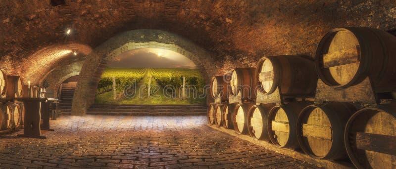 地窖老酒 免版税库存图片