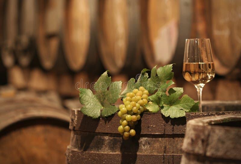 地窖葡萄酒 免版税图库摄影