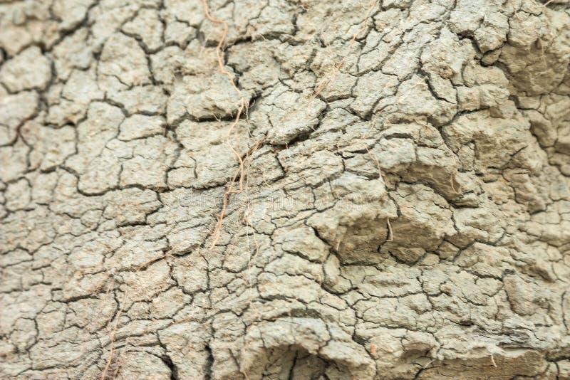 地面上形成的水成岩层数 在亚速号海的南部的海岸的露出 塔曼半岛,捷姆柳克 库存照片